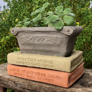 A Rose by any other name would smell as sweet Book Saucer Garden Library Planter