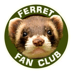 Ferret Fan Club