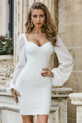 Crystal Long Sleeve Bodycon Evening Dress