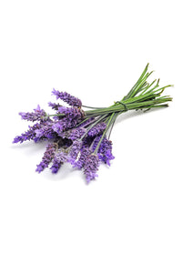dōTERRA Lavender Essential Oil (Food) - 5ml