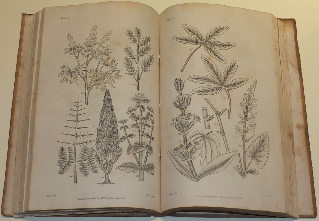 THORNTON, Robert John (c. 1768-1837). Elements of Botany. London: For the Author by J. Whiting, 1812.