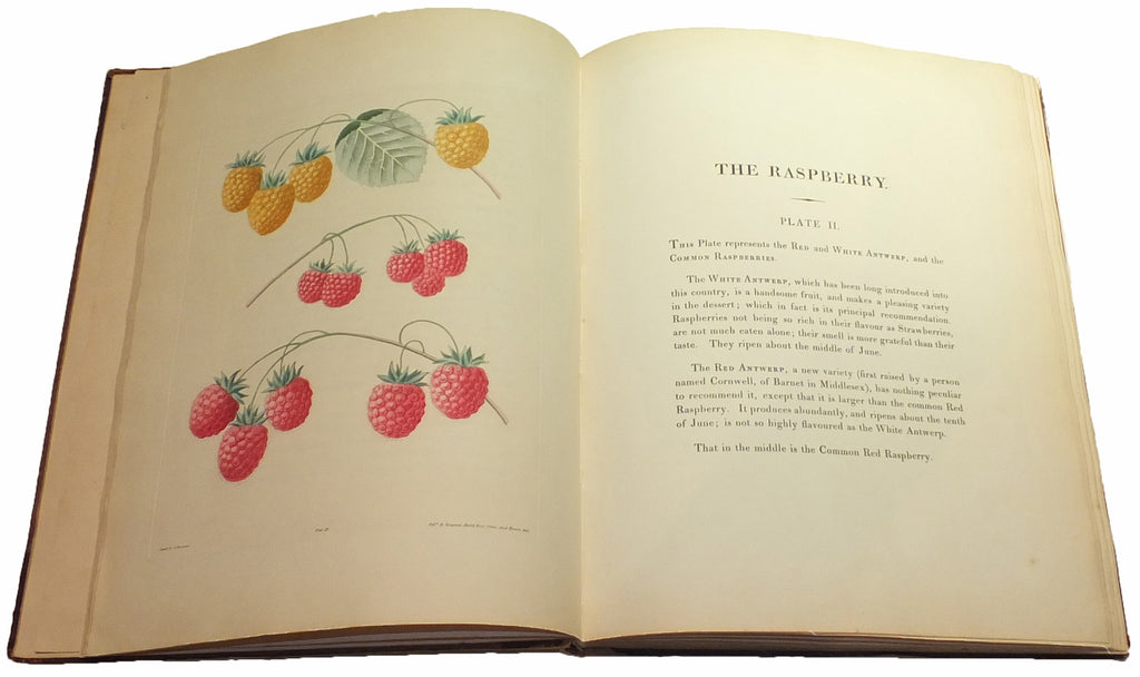 BROOKSHAW, George (1751-1823). Pomona Britannica, or a collection of the most esteemed fruits at present cultivated in Great Britain. London: T. Bensley for Longman, Hurst, Rees, Orme & Brown and John Lepard, [1816]-1817.