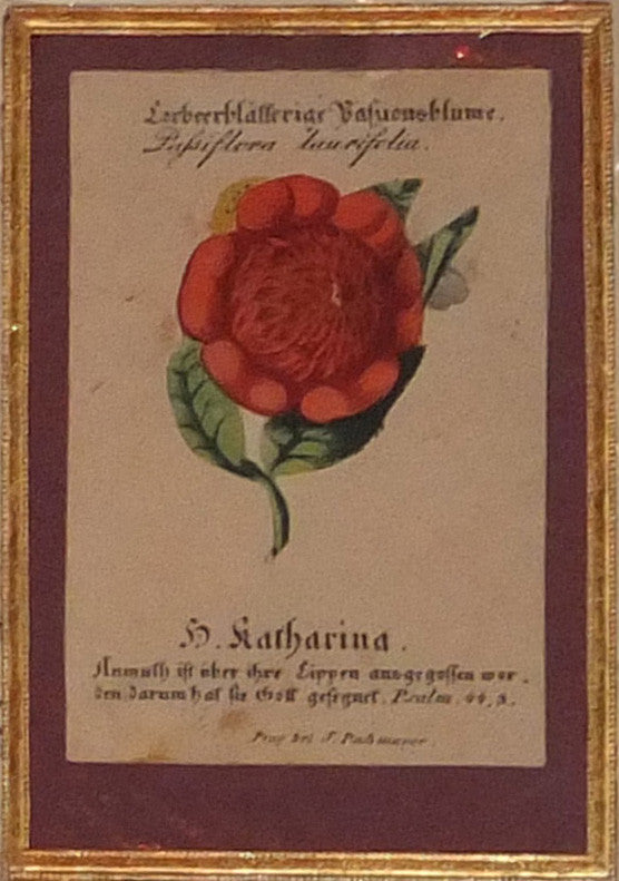 [BOTANICAL SAINT'S CARDS].  A fine collection of Saint's Cards, each with movable flower emblem. Einsiedeln: Charles and Nicholas Benziger; Prague: I.F. Marouschek, J. Pashmeyer; Ufer: N. Kremplsetzer, [ca, 1850].