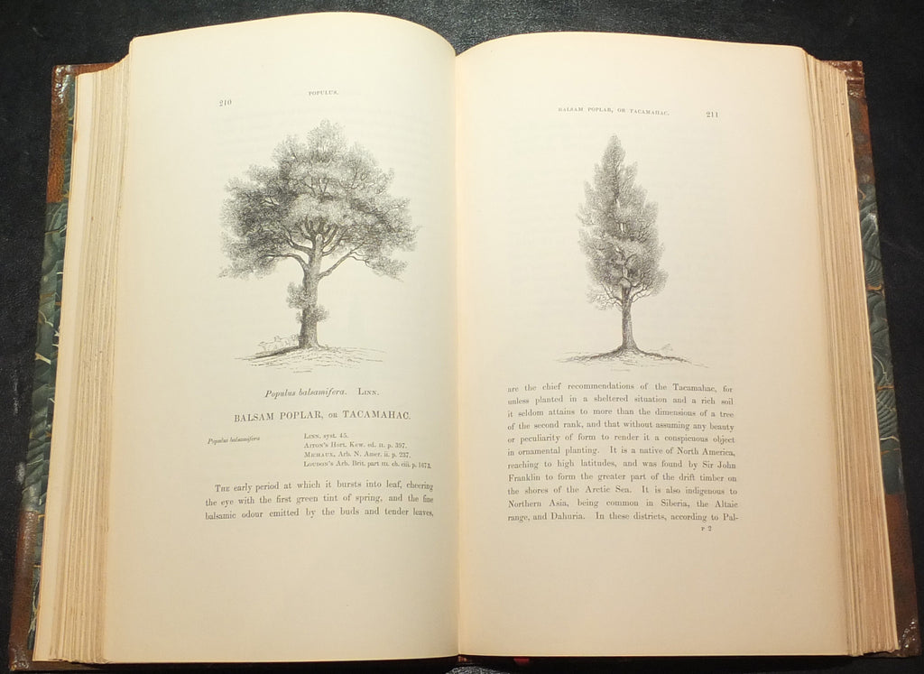 SELBY, Prideaux John (1788-1867). A History of British Forest-Trees, Indigenous and Introduced. London: John van Voorst, 1842.