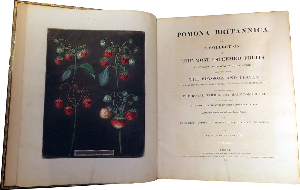 BROOKSHAW, George (1751-1823). Pomona Britannica. London: T. Bensley for the author, published by White, Cochrane and Co., E. Lloyd and W. Lindsell, [1804]-1812 [but plates watermarked 1822].