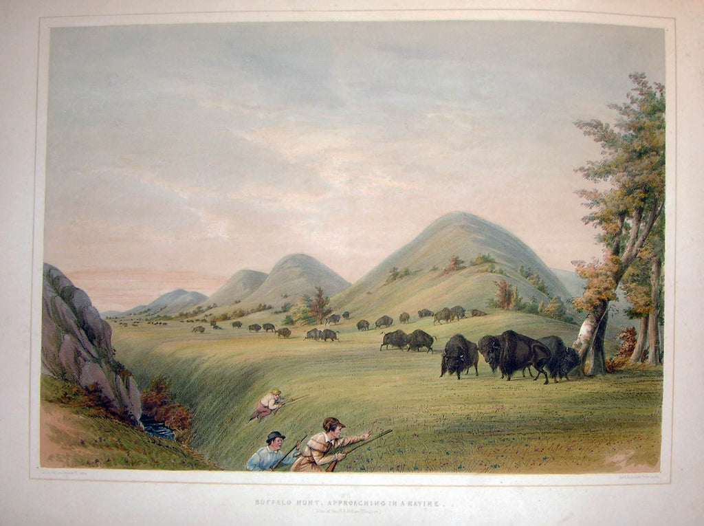 CATLIN, George (1796-1872). Plate No. 11 Buffalo Hunt, Approaching a Ravine