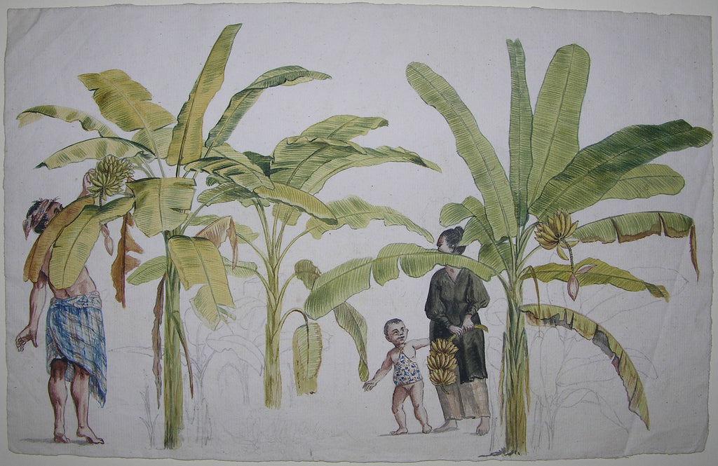 BRANDES, Jan (1743-1808). Original watercolour drawing of a banana plantation and pickers in Java. [Sweden: ca 1779-1785].