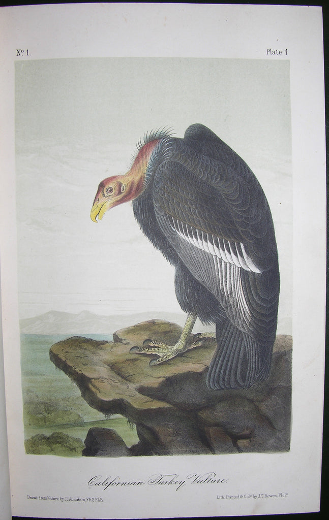 AUDUBON, John James (1785-1851). The Birds of America, from Drawings made in the United States and their Territories. New York: George R. Lockwood, [ca 1870].