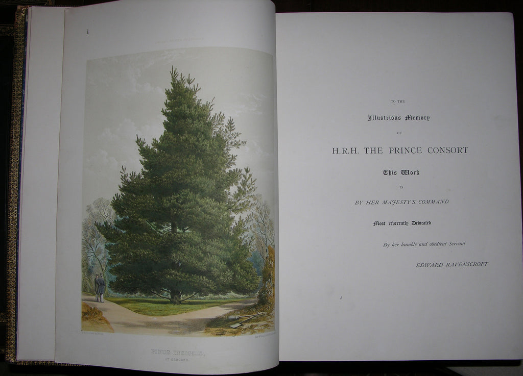 RAVENSCROFT, Edward James (1816-1890). The Pinetum Britannicum, a descriptive account of Hardy Coniferous Trees cultivated in Great Britain. Edinburgh and London: W. Blackwood & Sons, 1863-1884.