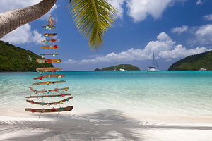 We love holidays in the islands. Drift wood Christmas tree, just the right amount of beach.