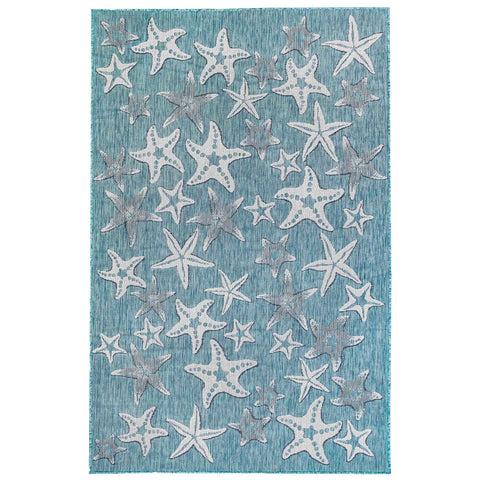 Carmel Starfish Indoor/Outdoor Rug