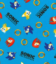 Load image into Gallery viewer, Sonic Reversible Cloth Face Mask
