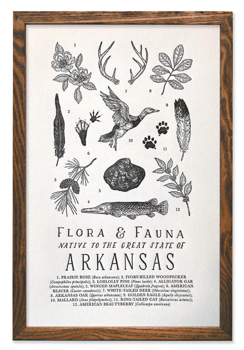 Arkansas Field Guide Letterpress Print