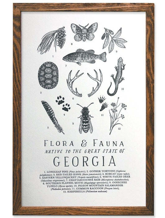 Georgia Field Guide Letterpress Print