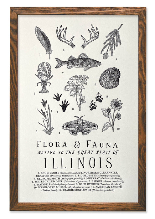 Illinois Field Guide Letterpress Print