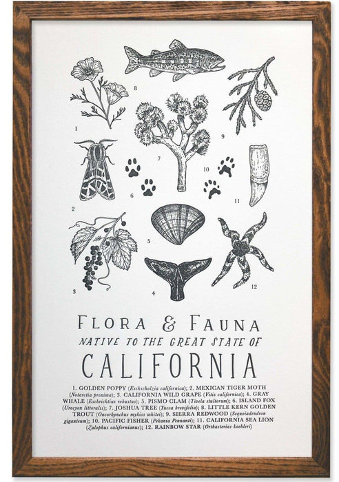 California Field Guide Letterpress Print