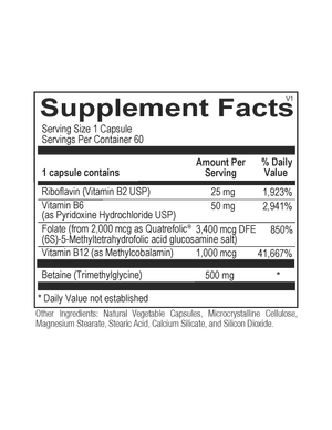 Methyl Support (60 capsules)