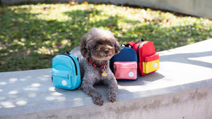 Backpack made for dogs, made to carry dog treats, poop bags, and dog accessories.