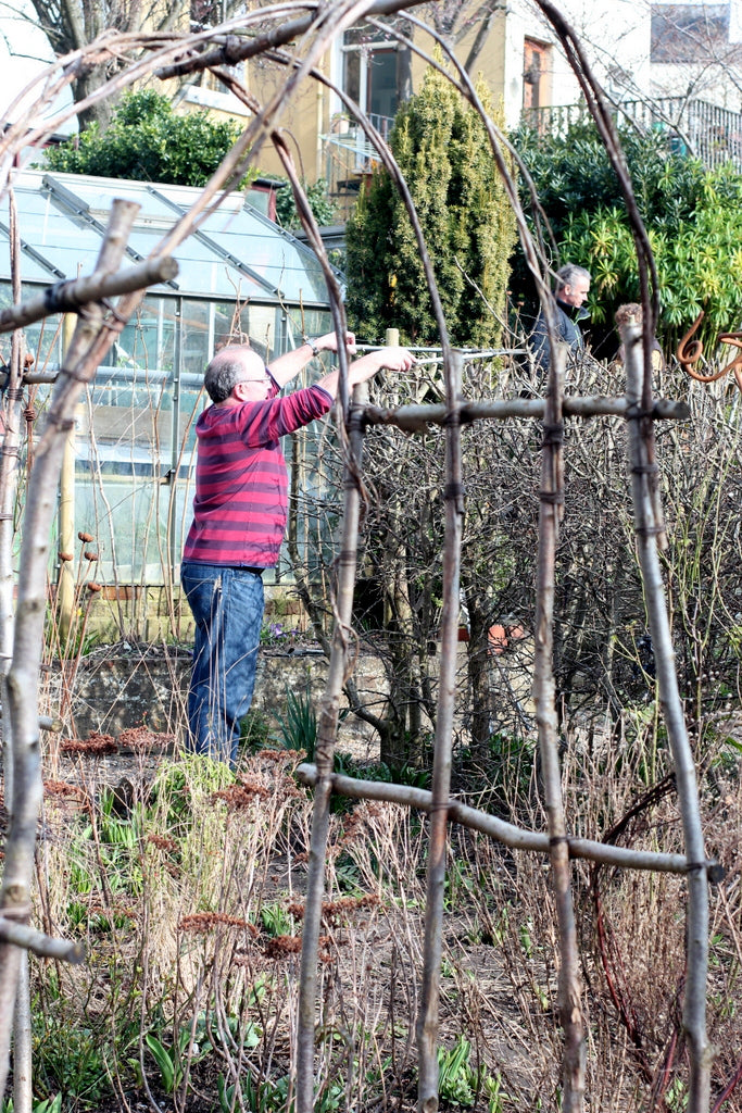 Pruning the hawthorn at the Garden House Brighton by What You Sow.