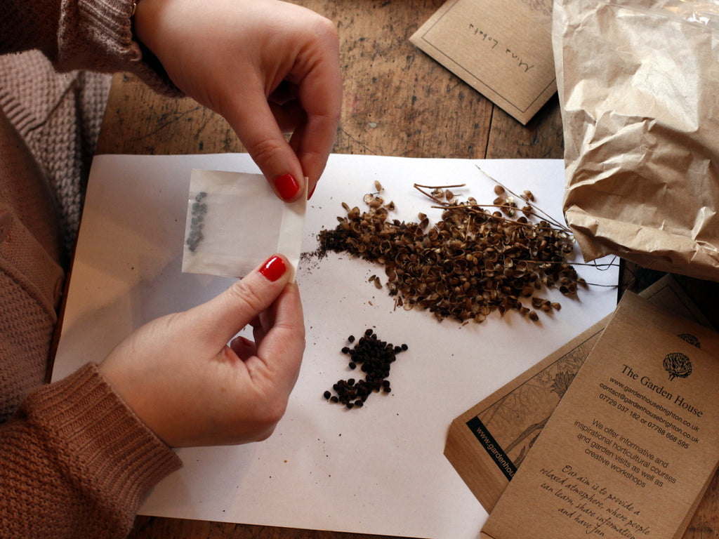 Seed saving. What You Sow at The Garden House
