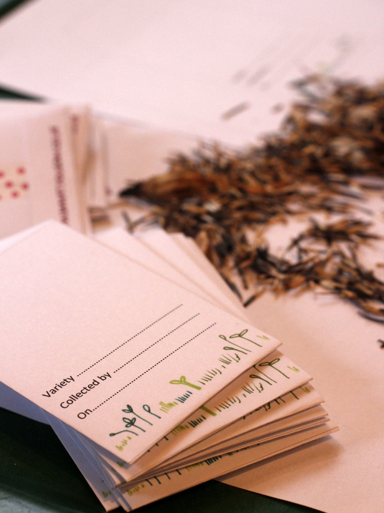 Printable seed packets by What You Sow