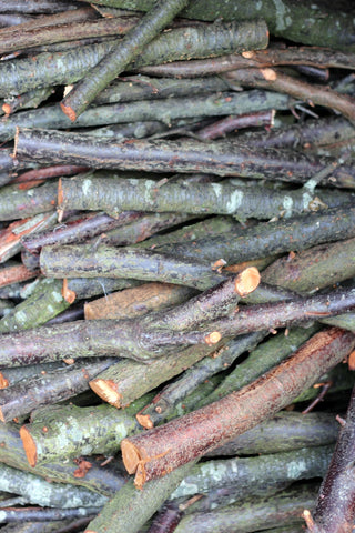 Logs. A September stroll around the garden with What You Sow