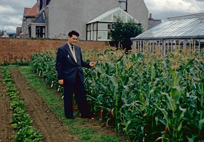 Grandpa Gordon and the Sweetcorn. Garden House Brighton by What You Sow.
