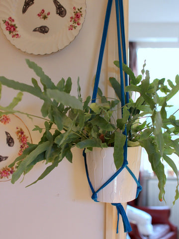 Blue Macramé Plant Hanger from Super + Super