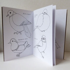 Bird Colouring Book at What You Sow