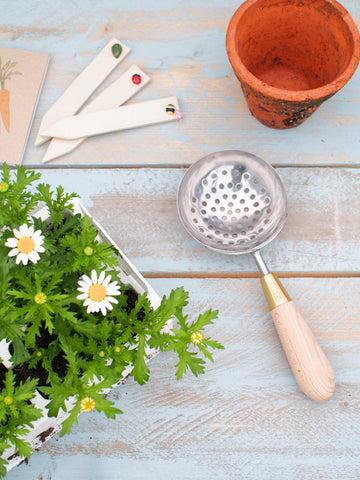 Potting Sieve by Sophie Conran