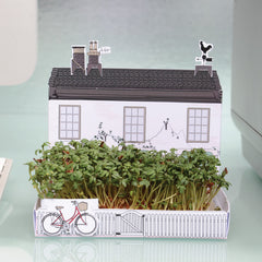 Village Shop mini Matchcarden grow your own kit from What You Sow