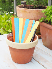 Bright Wooden Plant Labels