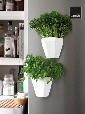Magnetic Herb Planter