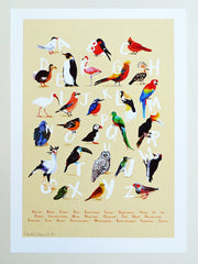 Avian Alphabet A4 Giclée print by Sarah Edmonds at What You Sow