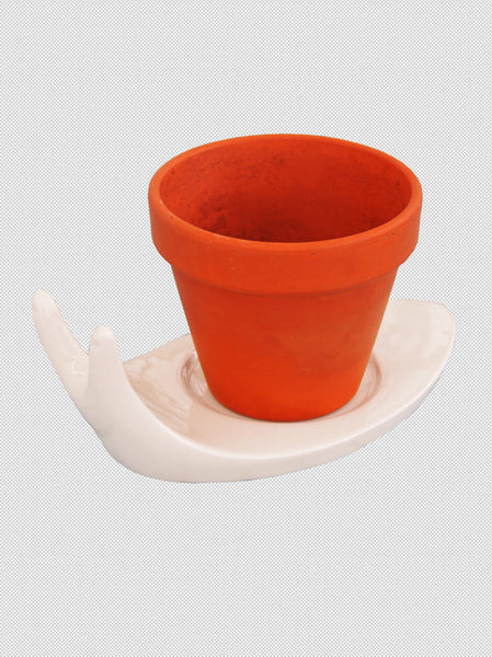 Mini Terracotta Plant Pot With Snail Saucer What You Sow