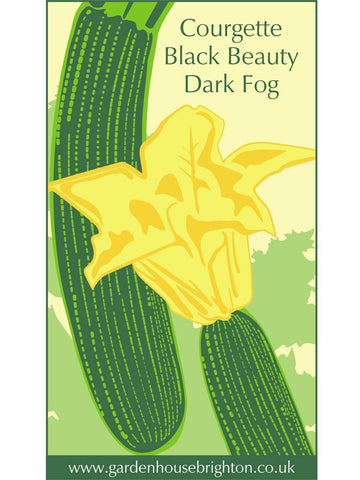 Courgette - Black Beauty Dark Fog