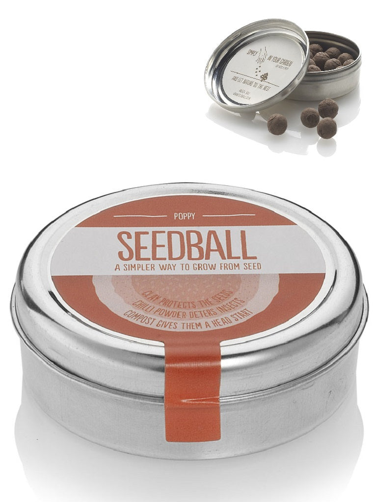 Poppy Seed ball Wildflower Tin