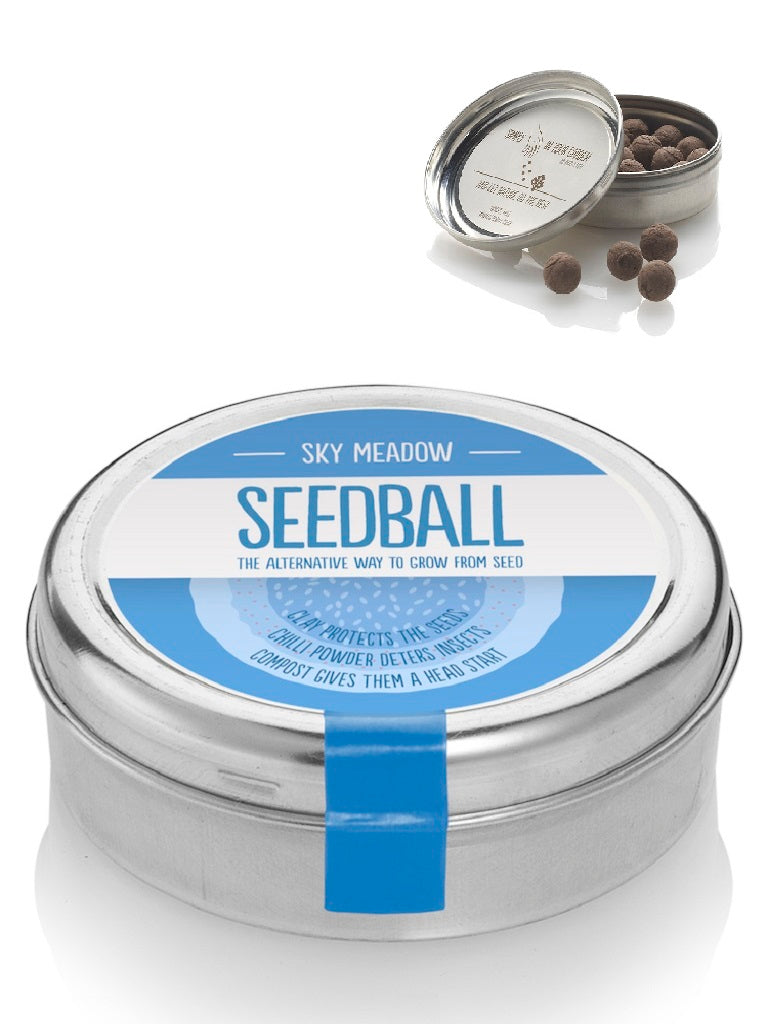 Sky Meadow Mix Seed ball Wildflower Tin