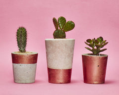 Small Concrete Planter with tiny plant by Hi Cacti - Copper