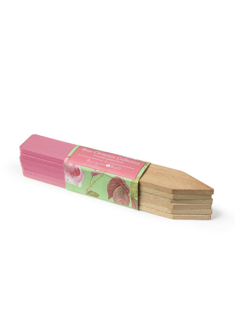 Rosa Chinensis Wooden Plant Labels
