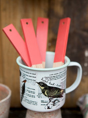 Bright Wooden Plant Labels from The Thoughtful Gardener at What You Sow