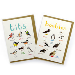 Boobies Greeting Card by Sarah Edmonds at What You Sow