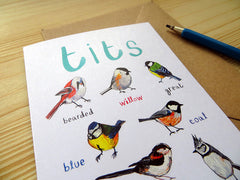 Tits Greeting Card by Sarah Edmonds at What You Sow