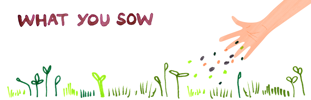 What You Sow