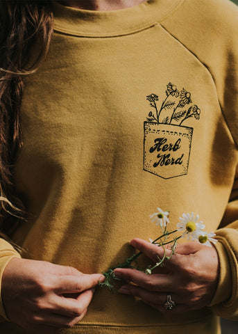 Herb Nerd - Vintaged Raglan Fleece in Chamomile