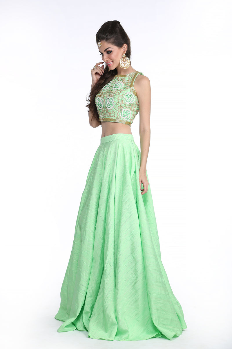Shanaya - Mint Green Embroided Crop Top and Skirt