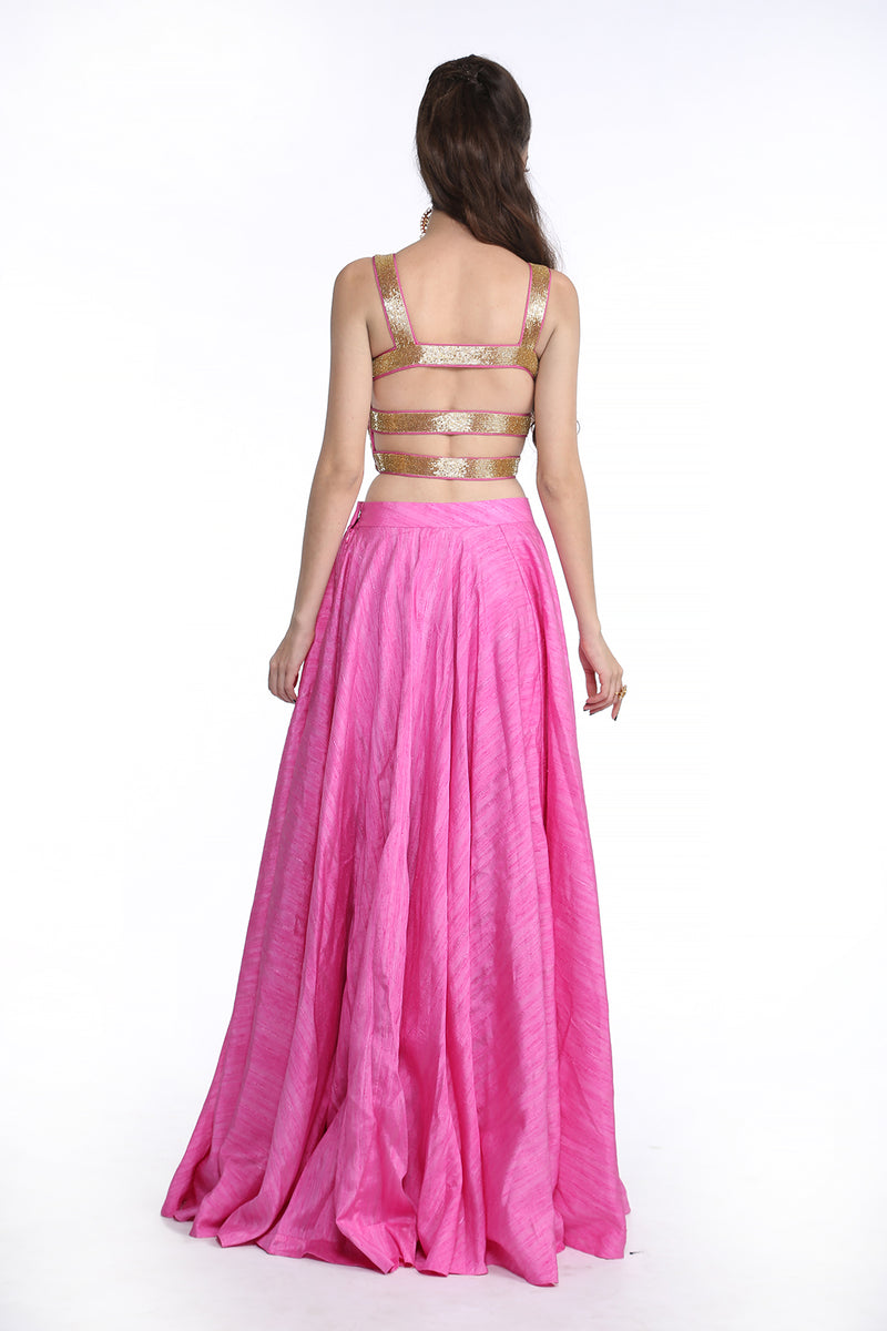 Shanaya - Mauve Embroided Crop Top and Skirt