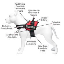 "Load image into Gallery viewer, Service Dog in Training Vest Harness, Service Dog Harness with 2 Reflective ""SERVICE DOG IN TRAINING"" Patches, by Industrial Puppy"