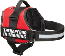 Load image into Gallery viewer, Industrial Puppy Therapy Dog In Training Vest With Hook and Loop Straps and Handle - Harness is Available in XXS to XXL - TDIT Dog Harness Features Reflective Patch and Comfortable Mesh Design
