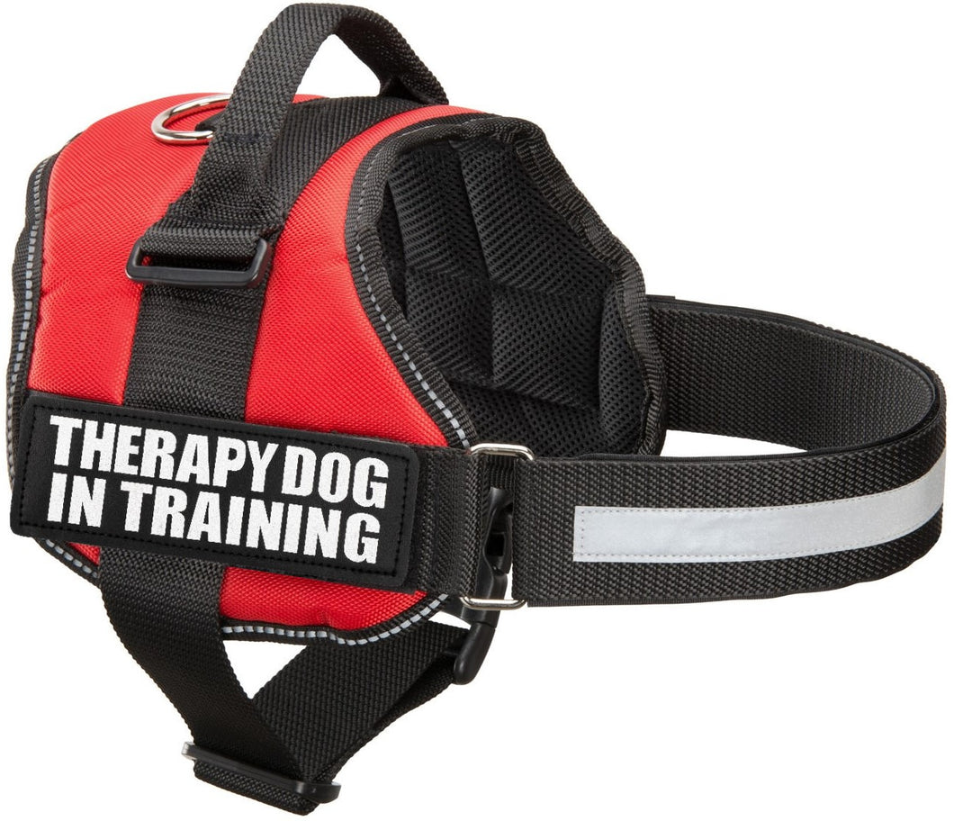 Industrial Puppy Therapy Dog In Training Vest With Hook and Loop Straps and Handle - Harness is Available in XXS to XXL - TDIT Dog Harness Features Reflective Patch and Comfortable Mesh Design